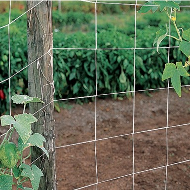 Netting and Fencing
